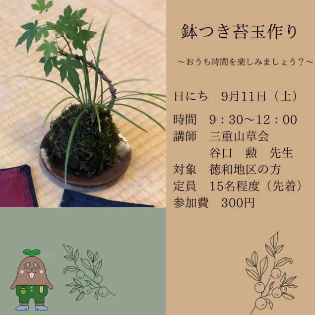 鉢つき苔玉作り